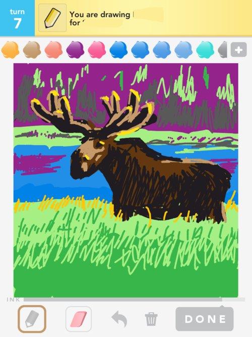 Moose02web