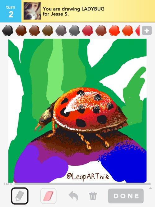 Ladybug_by_leopartnik