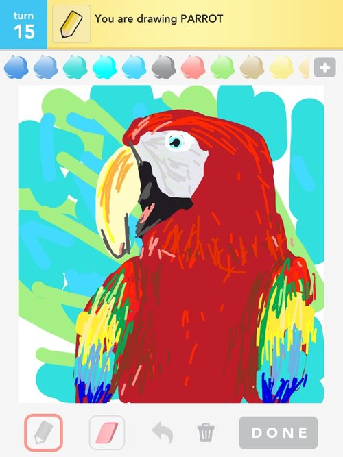 Parrot