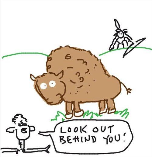 Dalecampbell_buffalo