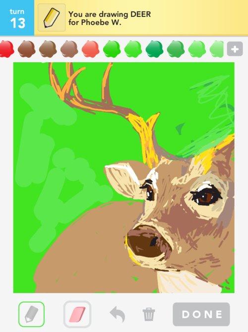 Z_deer