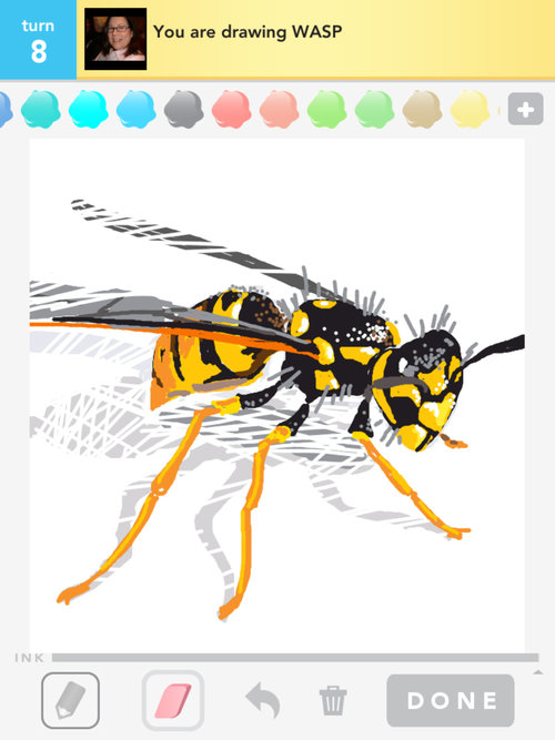 A_wasp