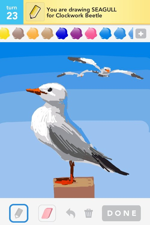 sign in to rate seagull