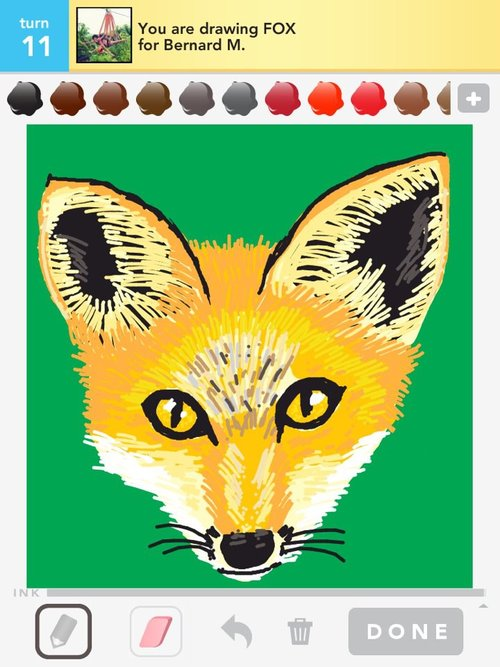 Draw_something_fox