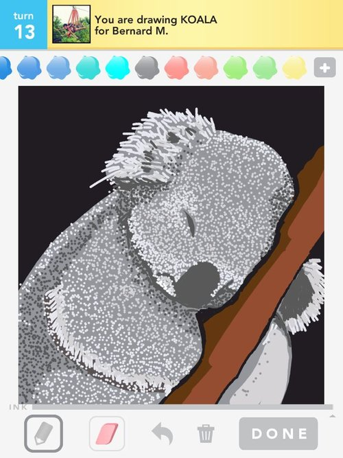 Draw_something_koala