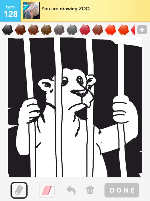Zoo Drawings How To Draw Zoo In Draw Something The Best Draw