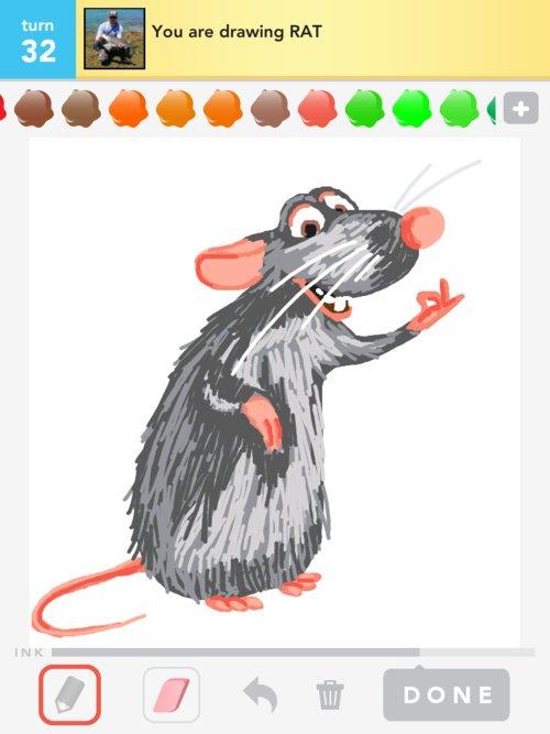 Rat..