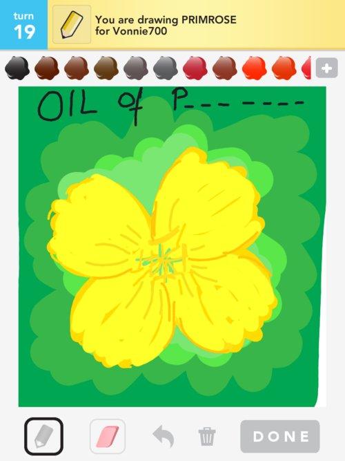 how to draw a primrose