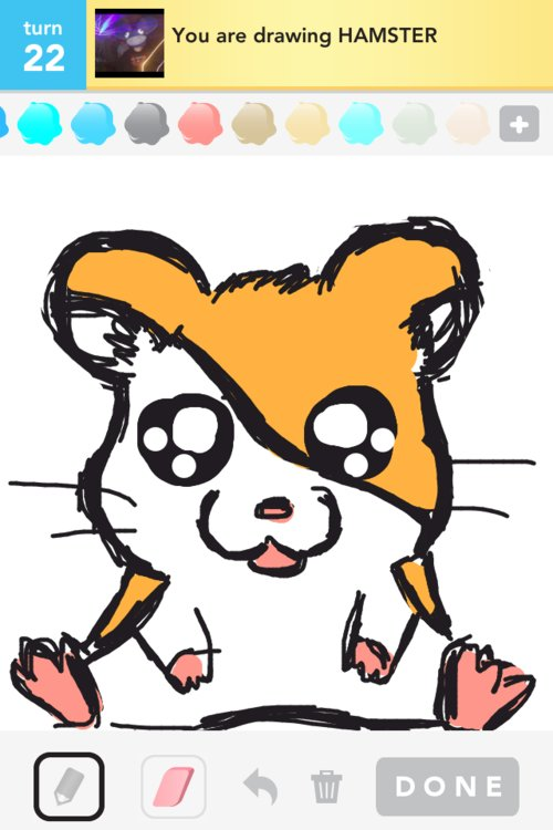 hamster drawings the best draw something drawings and draw