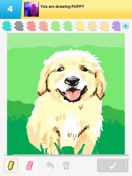 Puppy01web