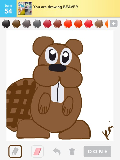 how to draw a bever