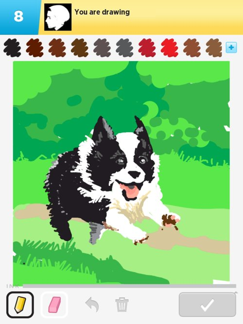 Puppy02web