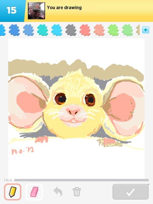 Mouse02web
