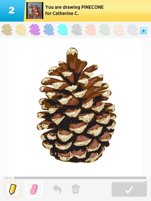Pinecone Drawings How To Draw Pinecone In Draw Something