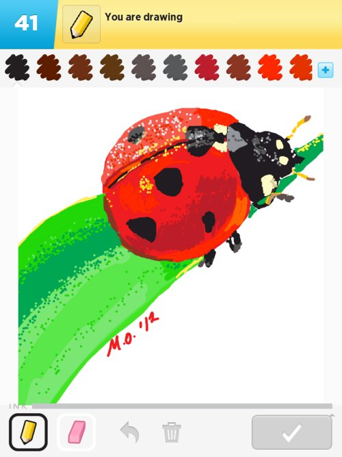 Ladybug01web