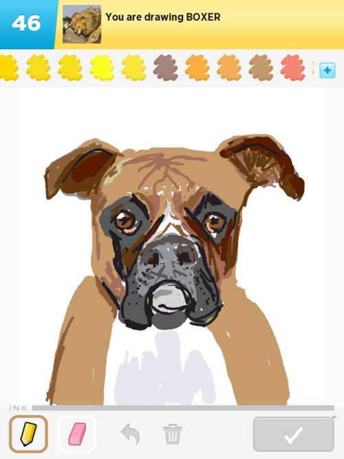 Boxer Drawings The Best Draw Something Drawings And Draw Something