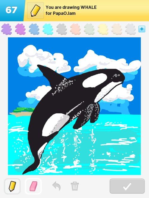 Qikdraw-whale