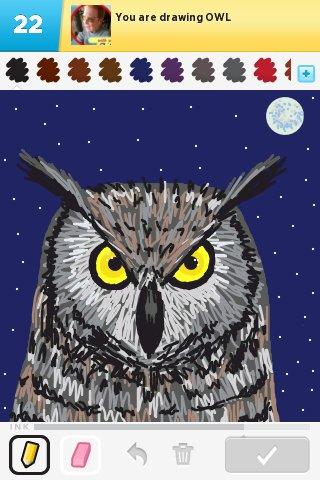 Owl_ds