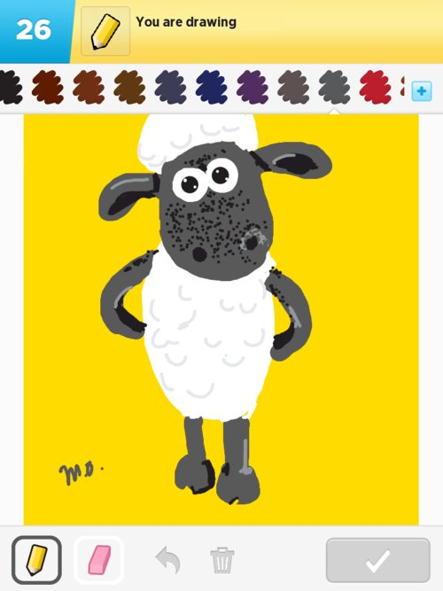 Sheep01web