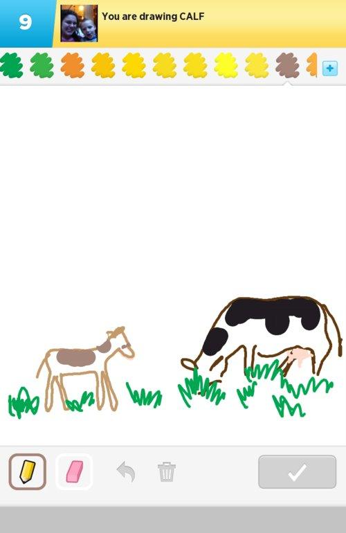Draw_calf