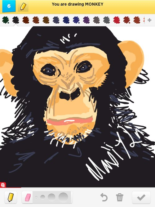 Chimp