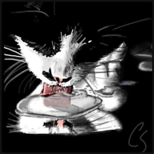 Milk__cat