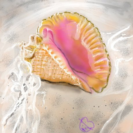 how to draw a 2 seashells