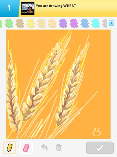 Wheat Drawings The Best Draw Something Drawings And Draw Something