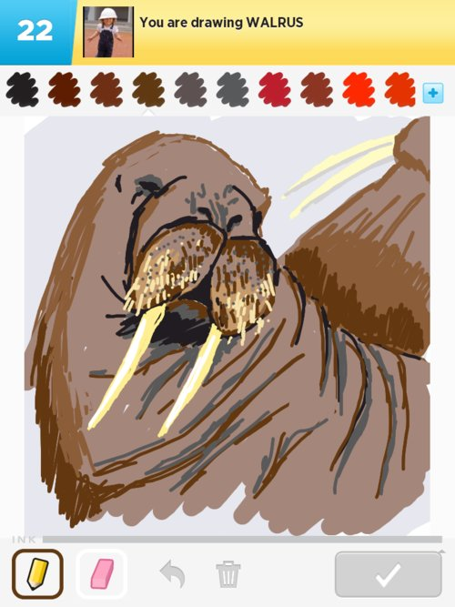 Walrus Drawings - How to Draw Walrus in Draw Something ...