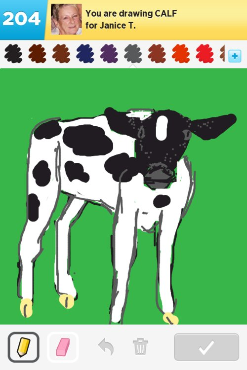 Calf Drawings - How to Draw Calf in Draw Something - The